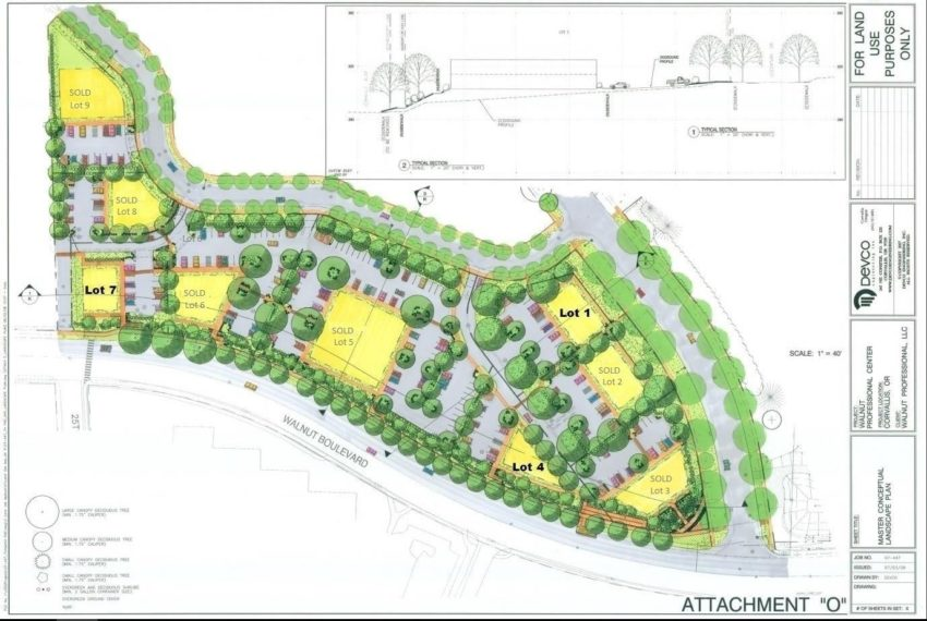 Walnut Professional Master Landscape Plan