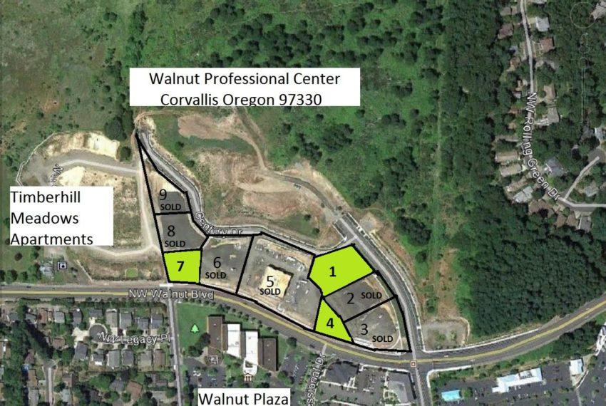 Walnut Professional aerial lots